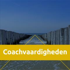 NP_Coachvaardigheden
