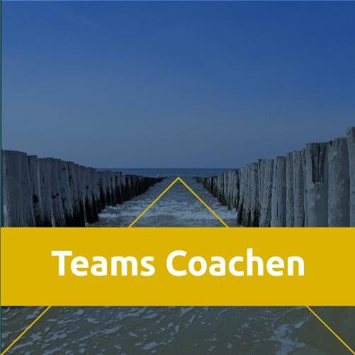 NP_TeamsCoachen